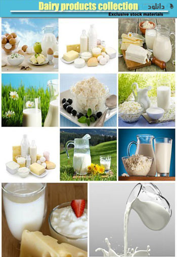 Dairy-products-collection