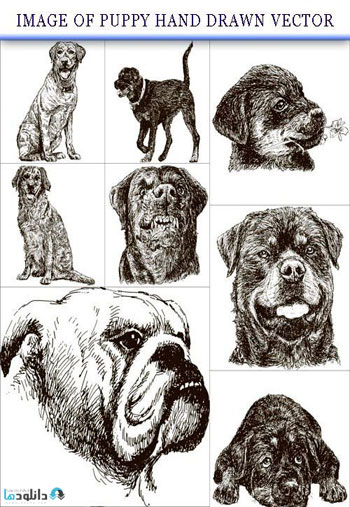 Image-of-puppy-hand-drawn