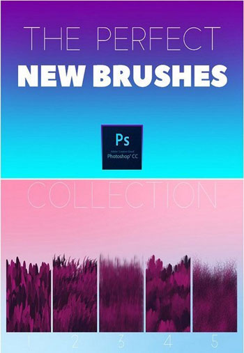 THE-PERFECT-NEW-BRUSHES