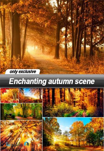 Enchanting-autumn-scene