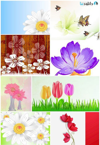 Flowers-nature-background