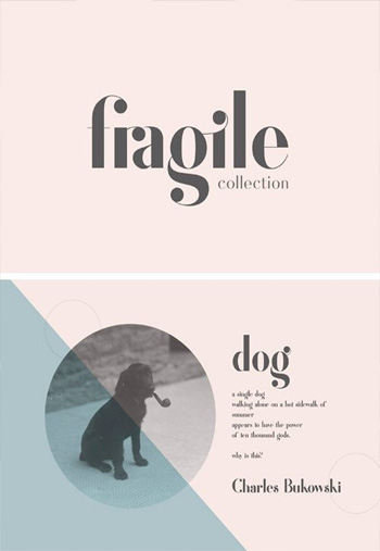 Fragile-Collection-Font