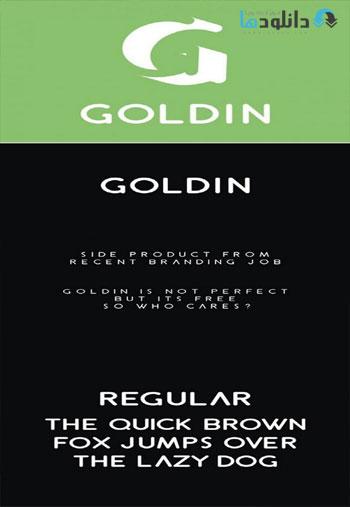 Goldin-Typeface-Font