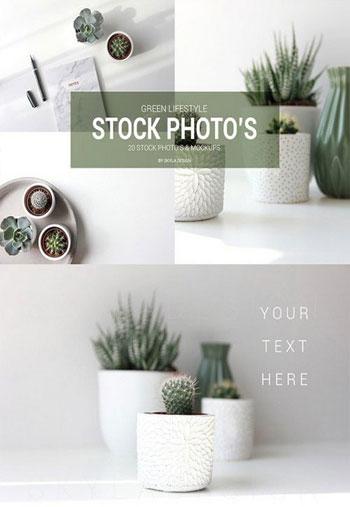 Green-lifestyle-stock-photo