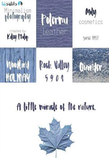 Haley-Font