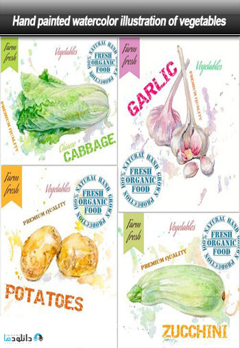 Hand-painted-watercolor-illustration-of-vegetables