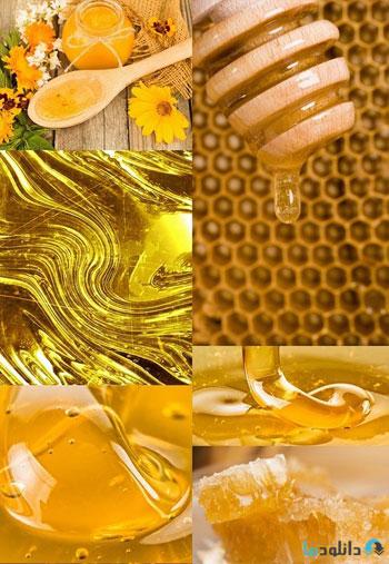 استوک-Honey