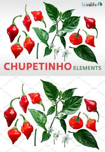 Chupetinho-elements