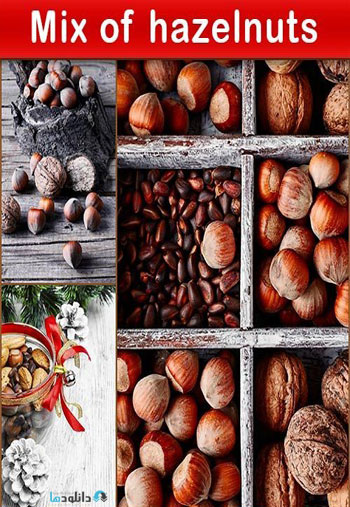 Mix-of-hazelnuts