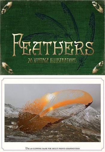 Vintage-Feathers