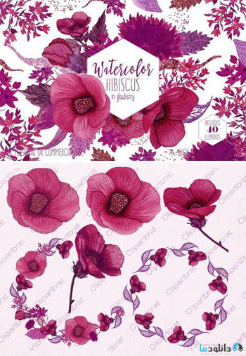 Wine-Pink-Tropical-Floral