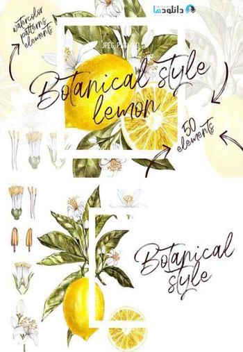 Lemon-in-botanical-style