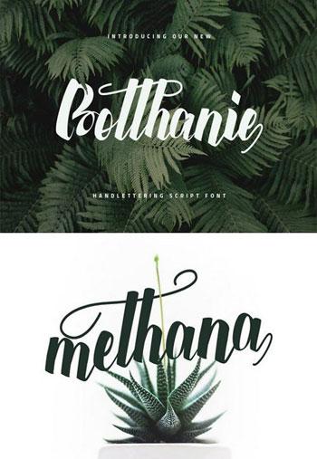 Botthanie-Script-V1