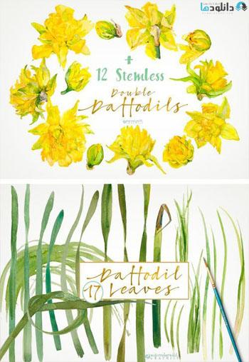 Double Daffodils Font