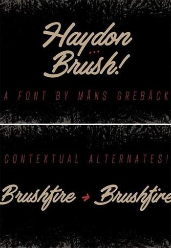 Haydon-Brush