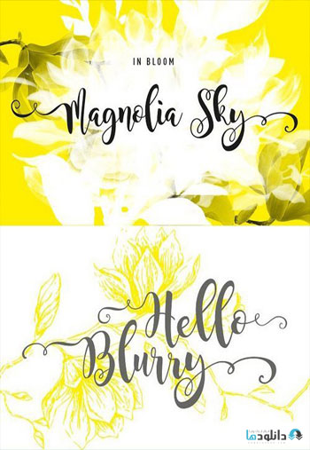 Magnolia-Sky