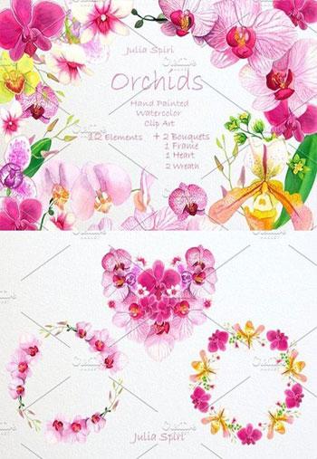 Orchids-Watercolor-Clip-Art