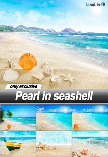 Pearl-in-seashell