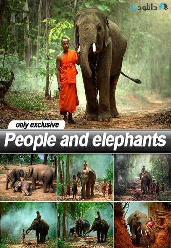 People-and-elephants