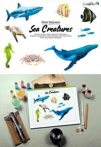 Set-of-Sea-Creatures
