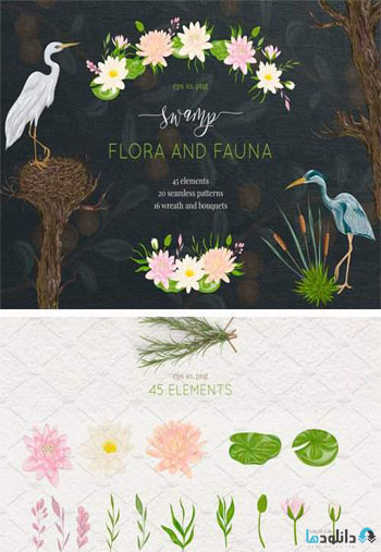 Swamp-Flora-and-Fauna