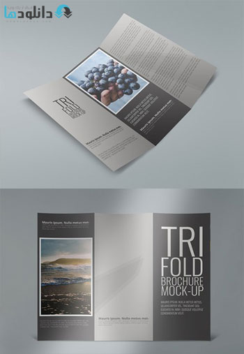 Tri-Fold-Brochure-Mock-Ups