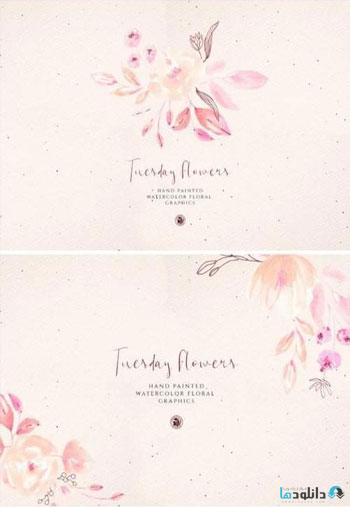 Tuesday-Flowers