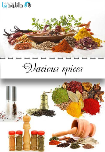 https://img5.downloadha.com/AliGh/IMG/Various-spices-raster-graphics-Stock.jpg