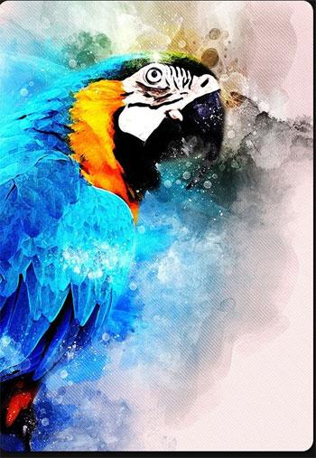 Watercolor-Aratist-Photoshop