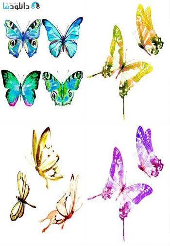 Watercolor-Butterfly-Isolated
