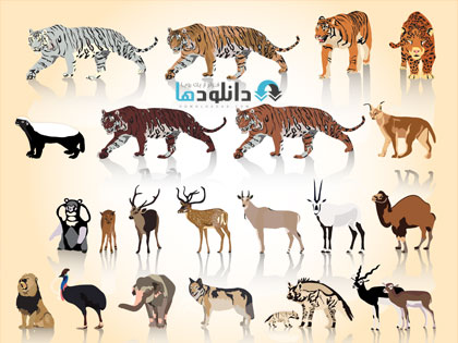 animal  دانلود تصاویر وکتور حیوانات باغ وحش، فیل، زرافه، شیر و ...   Vectors Wild Different Animals