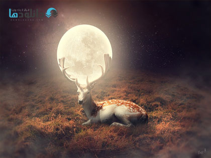 deer-of-moon