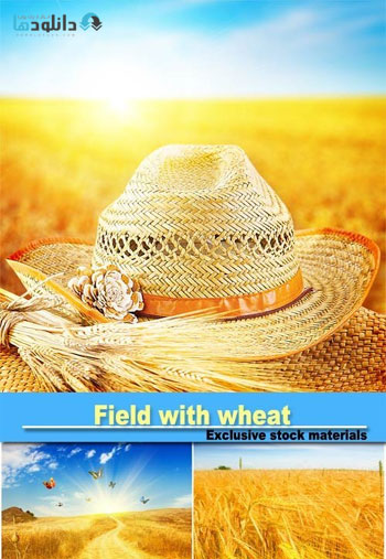 field-with-wheat