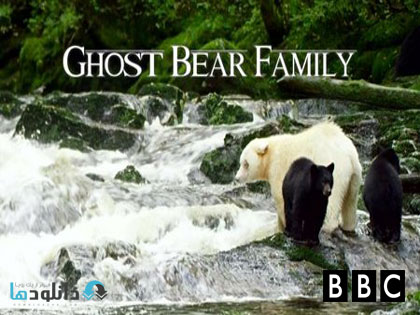 ghost bear family دانلود مستند BBC Natural World – Ghost Bear Family 2015