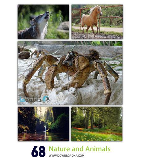 68 Nature and Animals Cover%28Downloadha.com%29 دانلود مجموعه 68 والپیپر از طبیعت و حیوانات Nature and Animals Wallpapers