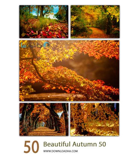 50 Beautiful Autumn Cover%28Downloadha.com%29 دانلود مجموعه 50 والپیپر پاییزی
