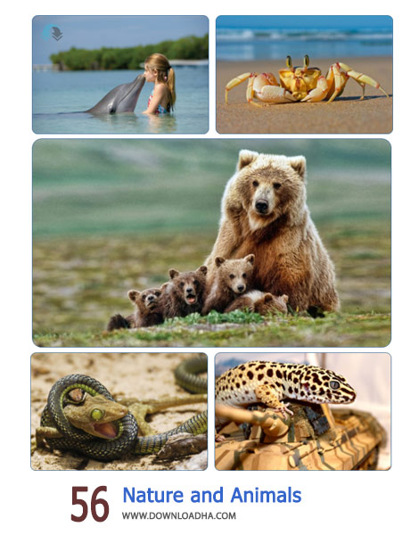 56-Nature-and-Animals-Cover
