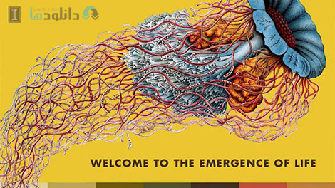 Emergence-of-Life-Cover