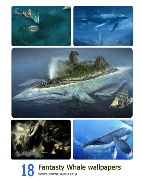 18-Fantasty-Whale-wallpapers-Cover