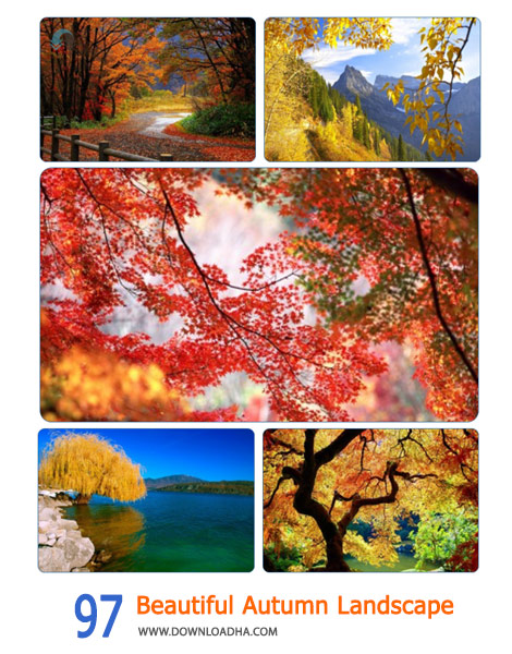 97-Beautiful-Autumn-Landscape-Cover