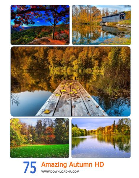75-Amazing-Autumn-HD-Cover