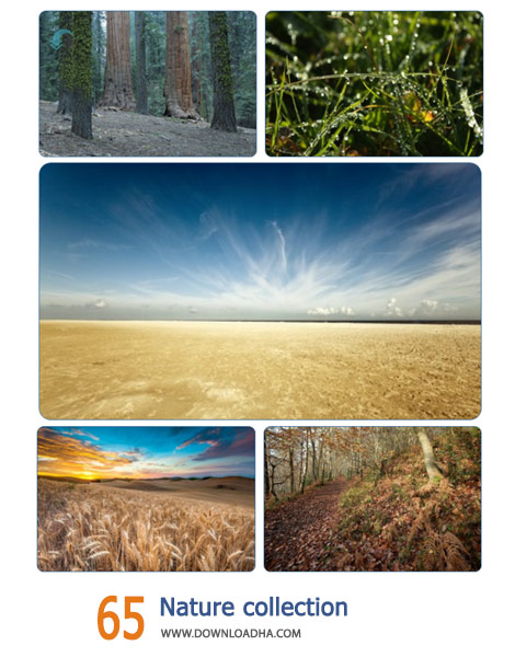 65-Nature-collection-Cover