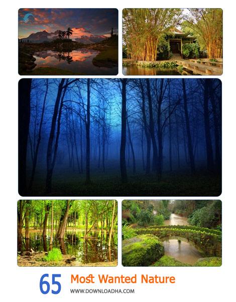 دانلود-والپیپر-طبیعت