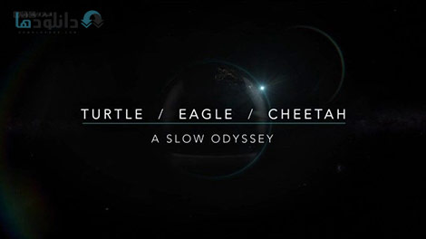 دانلود-مستند-BBC-Turtle-Eagle-Cheetah-A-Slow-Odyssey