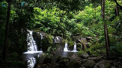 Lynda-Landscape-Photography-Tropical-Scenes-Cover