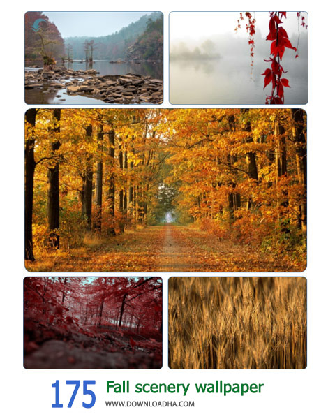 175-Fall-scenery-wallpaper-Cover