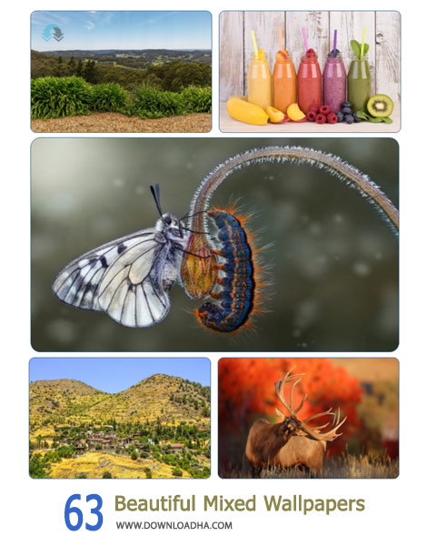 63-Beautiful-Mixed-Wallpapers-Cover