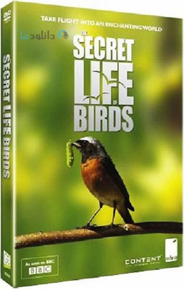 دانلود-مستند-BBC-Secret-Life-of-Birds