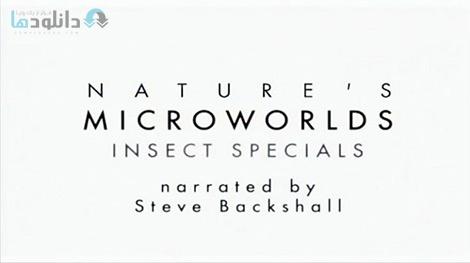 دانلود-مستند-Insect-Worlds