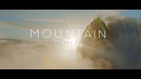 Mountain life at the extreme 2017 for American cuisine movie download